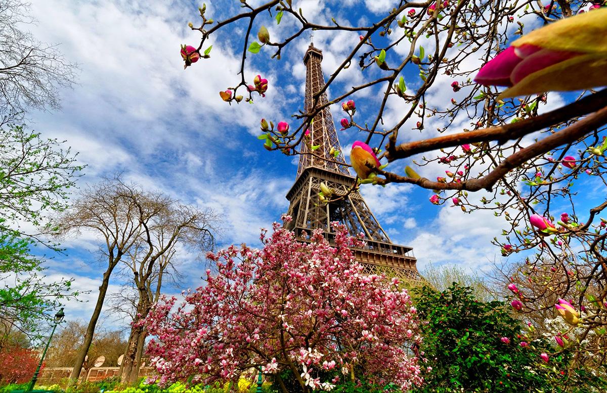 Eiffel - TOUR 8